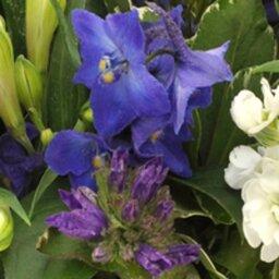 Boeket blauw - paars